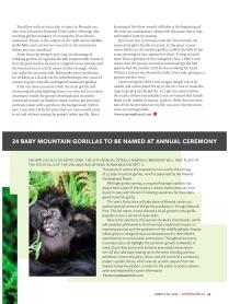 Gorillacover5